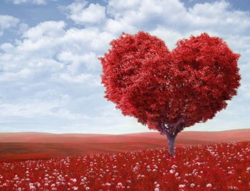 Valentine's Day and the Caring Heart